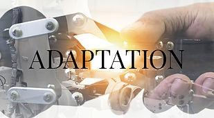 adaptation-5.jpg