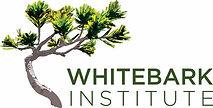 Whitebark.jpg