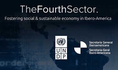 The Fourth Sector in Ibero-America Project