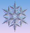 snowflake.png