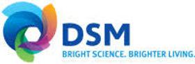 DSM logo .jpg