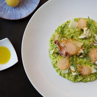 Risotto courgette / citron confit / calamars