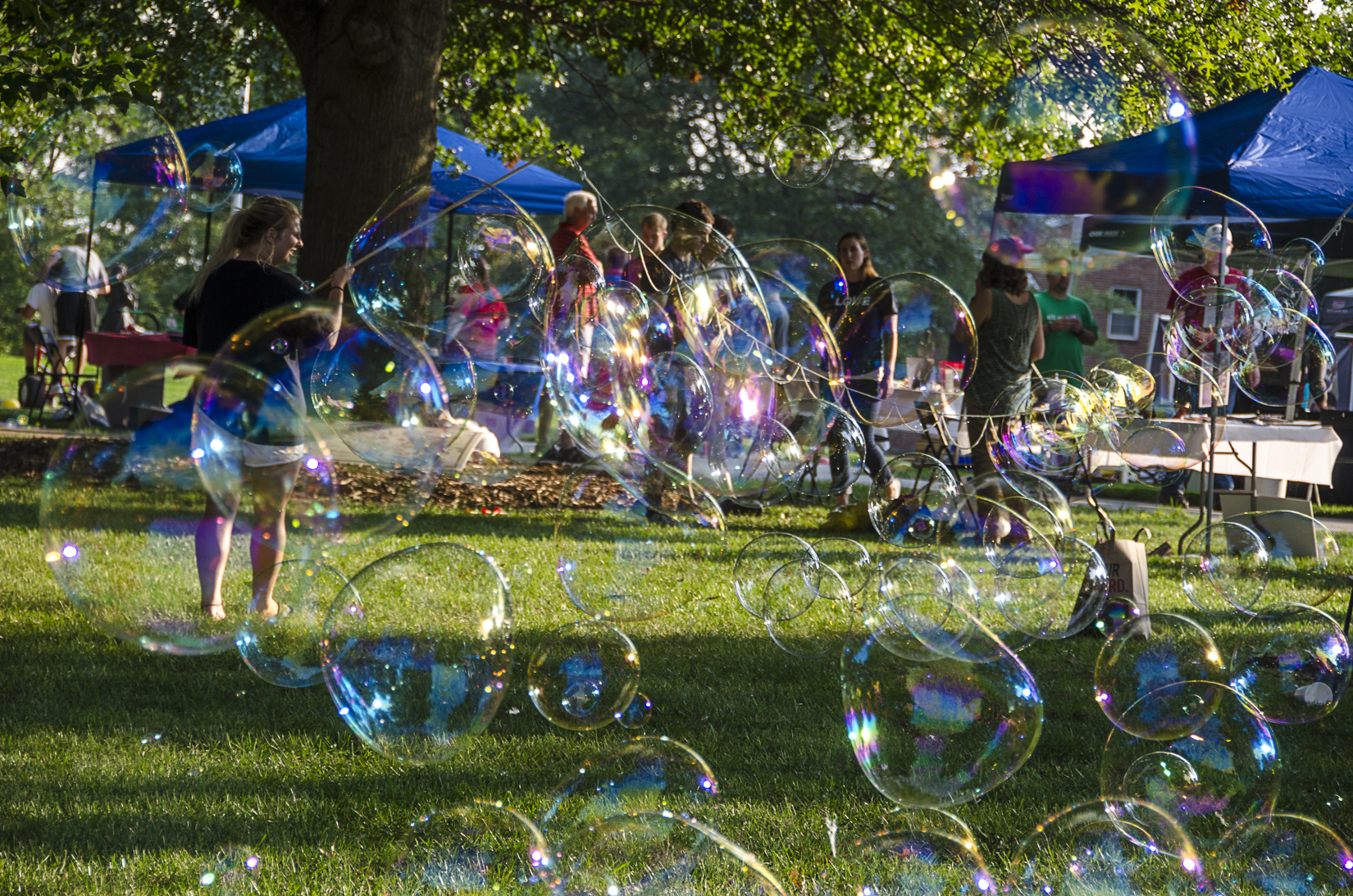 Bubbles on Campus