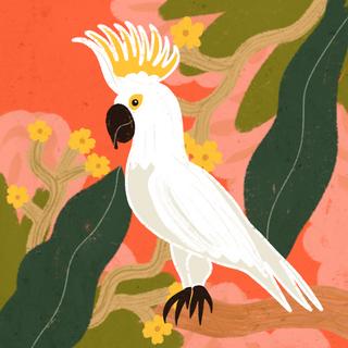 DAY 45 - TROPICAL BIRD