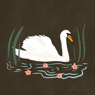DAY 44 - SWAN