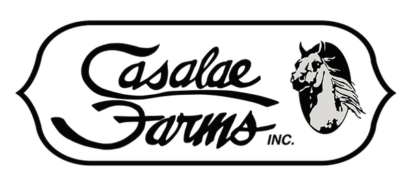 Casalae-Black-Grey-Logo.png