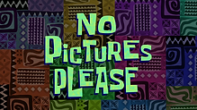 No_Pictures_Please.png