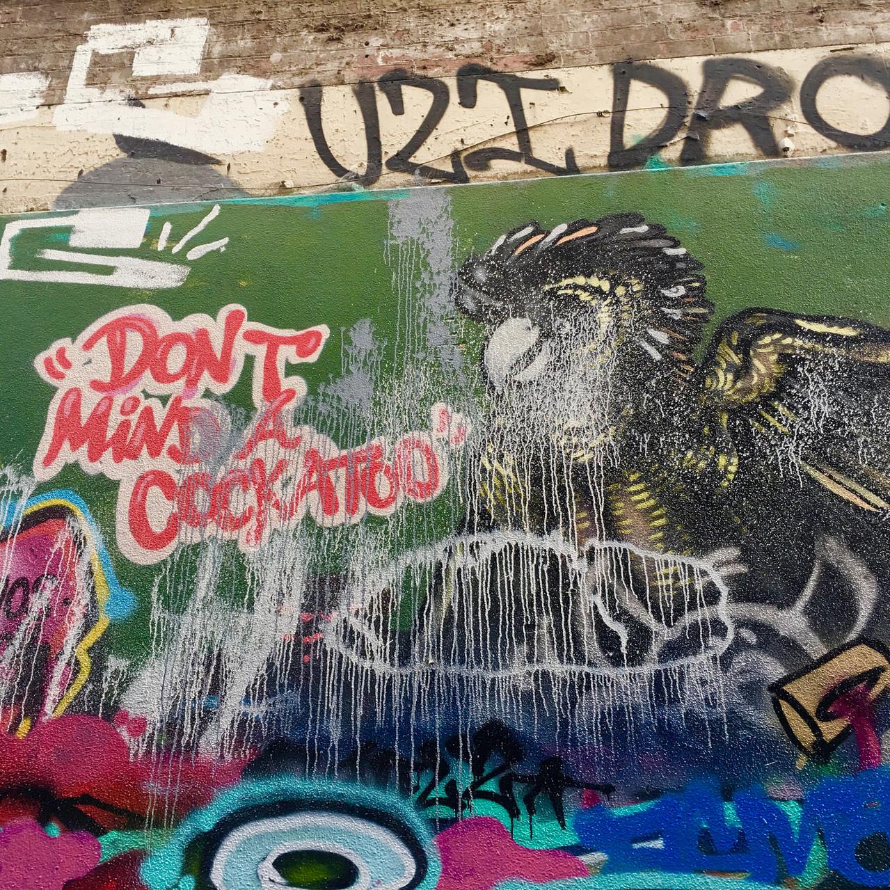 "Graffiti art titled ""Don't Mind a Cockatoo"" | Union Lane"