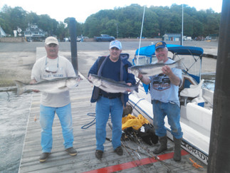 Boat Limit of Stripers again ,Porgies also