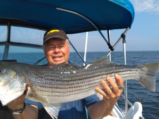 Fall Fishing has started 40 Bluefish to 8lbs,6 Stripers to 30 inches,plus Big Porgies