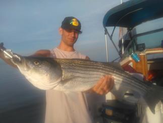 Stripers still Biting ,Blues move in,Plenty of Big Porgies and Keeper Sea Bass