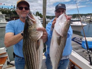 Sloppy Seas Bass were biting