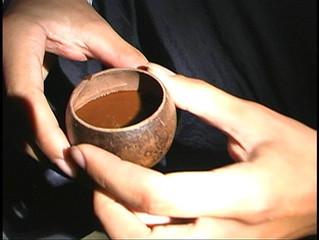 Ayahuasca at Home