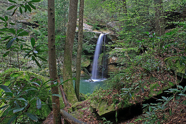 Lick falls in ky