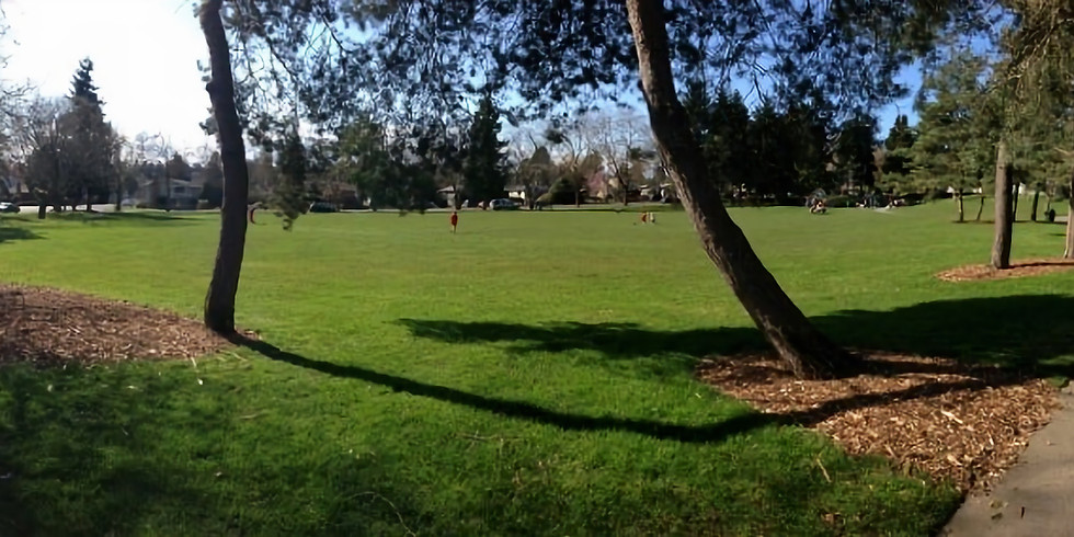 Zumba on Sandel Park Sunday (1)