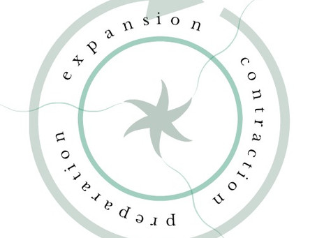 The Expansion Cycle