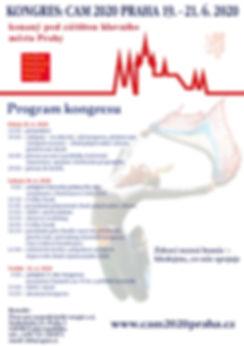 Program kongresu