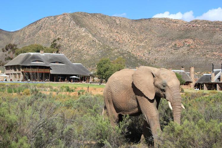 Roadtrip mit Freunden durch Südafrika