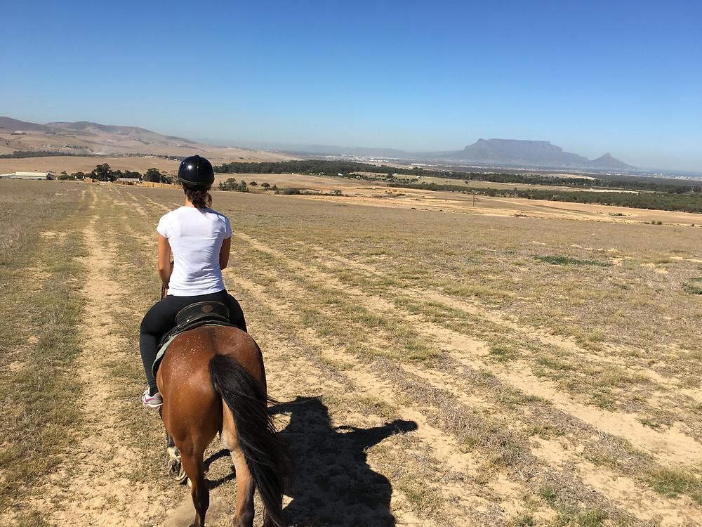 Unterwegs mit Pferd: der Tafelberg dient als Kulisse