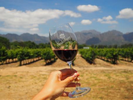 Südafrikanische Weine in Europa genießen
