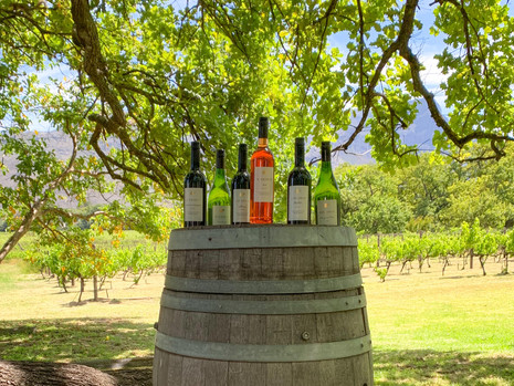 Gewinnt ein Weinpaket von Eikehof