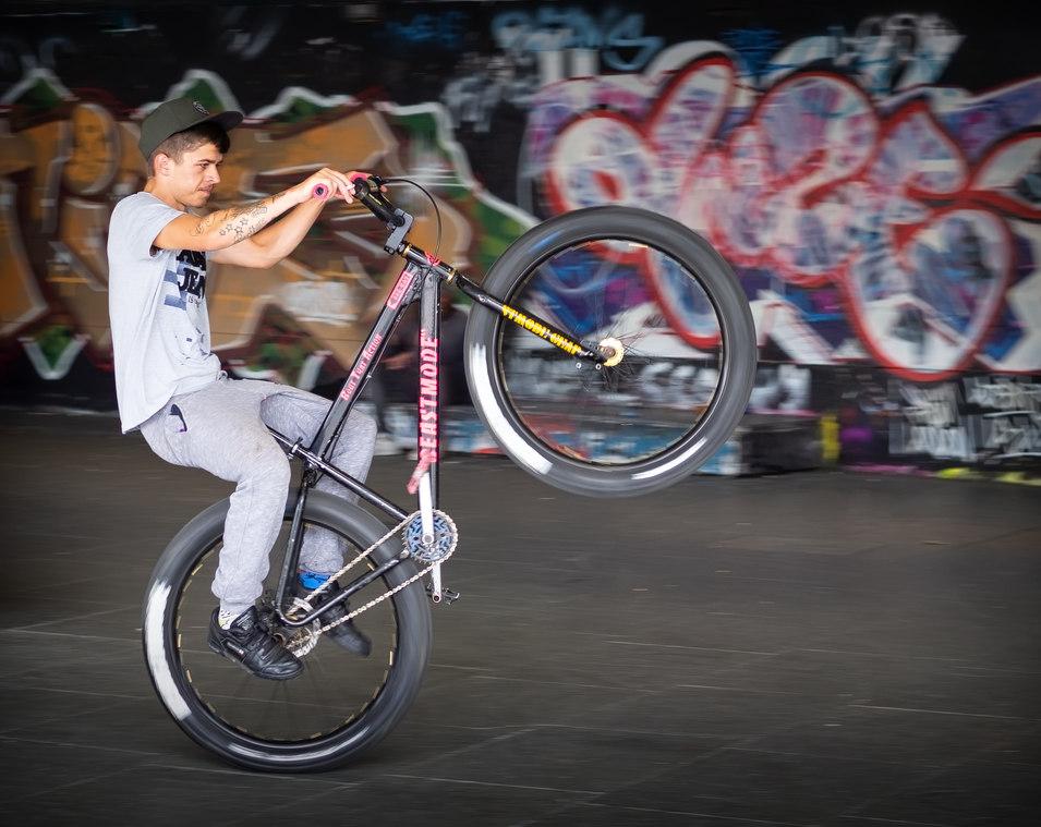 Rider at the Skateboard Park