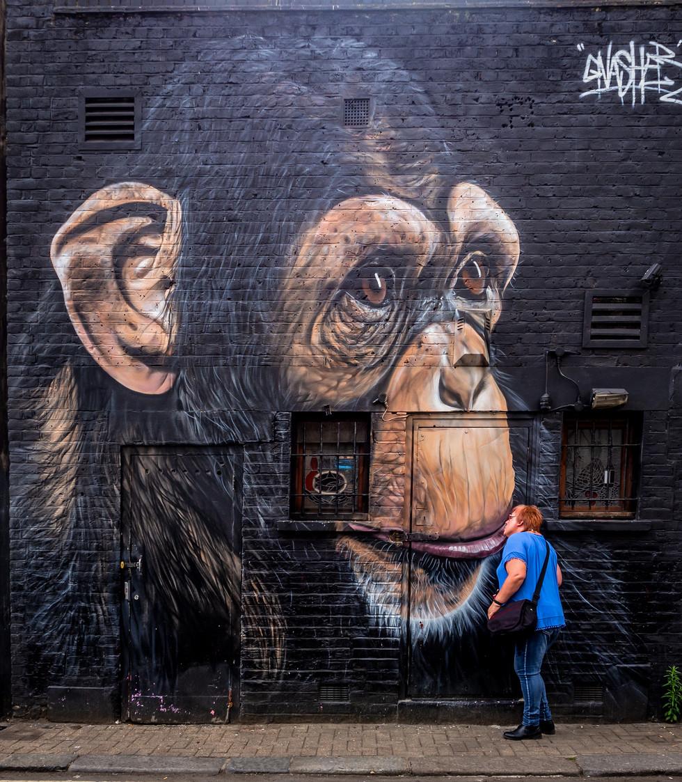Monkey and Friend