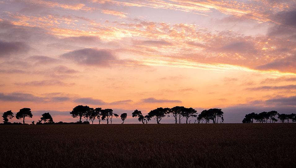Sunset in West Norfolk