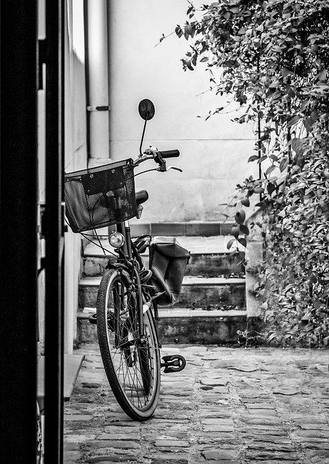 The Bike in the Alley