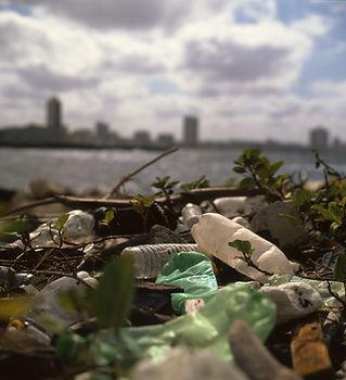 Plastic Trash on Beach