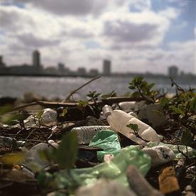 ถังขยะบนชายหาด