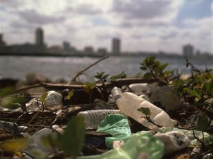 Um consumo mais responsável e sustentável
