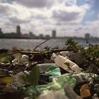ビーチのゴミ箱