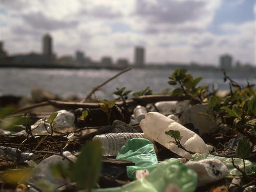 Zero - Waste Lifestyle: Choice or a Need?