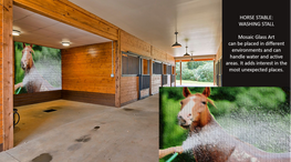 Horse Washing Stall.png