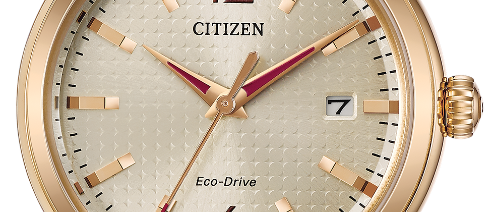 Ladies Citizen Eco Drive FE6083-05P