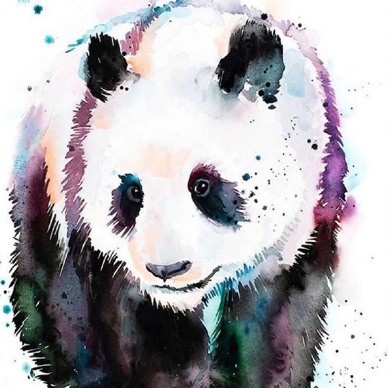 Мастер-класс акварелью для взрослых и детей от 8 лет. Панда