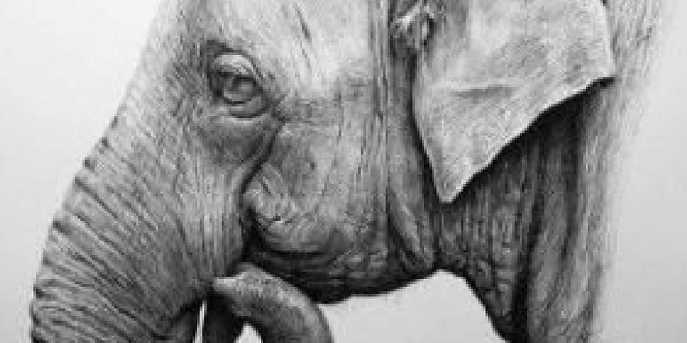 Мастер-класс ГРАФИКА. Слон