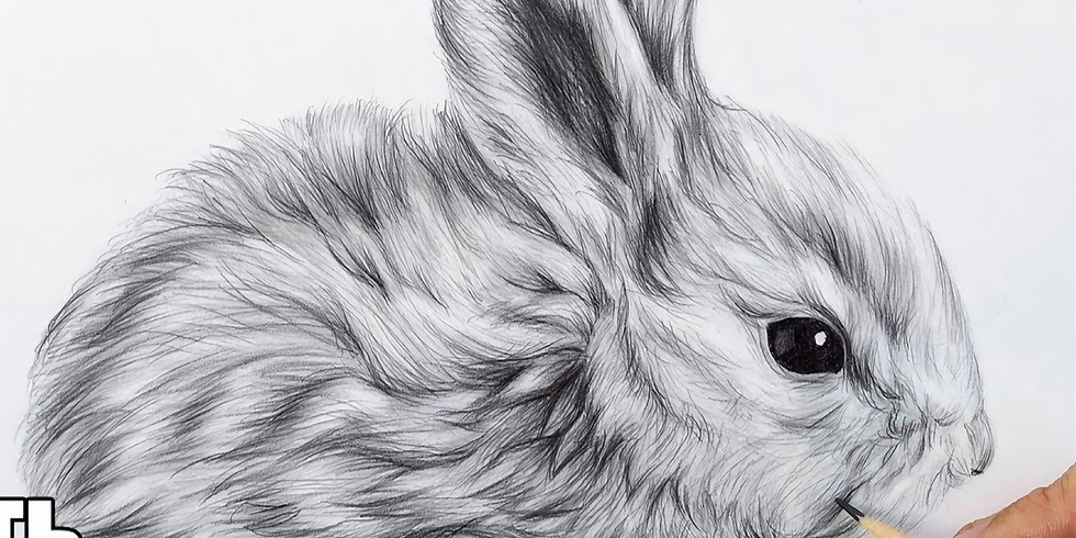 Мастер-класс. Графика. Кролик