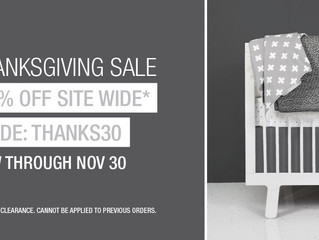 Happy Thanksgiving! Our biggest sale of the Year is up and running.