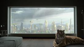 Ma voix dans tous les cinémas IMAX de France !