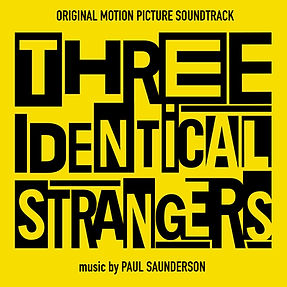 Three Identical Strangers Cover Art.jpg