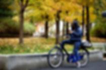 Yale Bikeshare 2.jpg