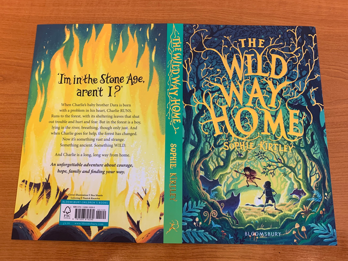 First glimpse of the cover of The Wild Way Home
