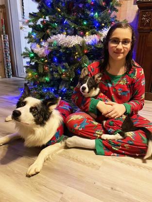 Wayne County Christmas:  Past and Present
