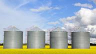 Our Habitat:Keep Silos Out of Your Habitat By Matthew Whittle
