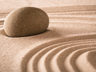 Mindfulness Course - Guest Speaker