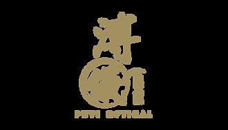 Puyi-Optical-logo.png