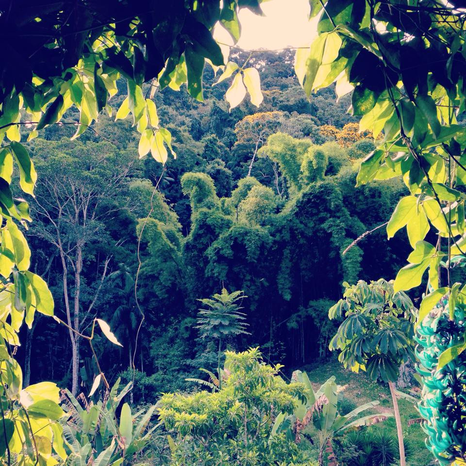 Paisagem Tibá. Fonte: Foto de Luiza Cunha