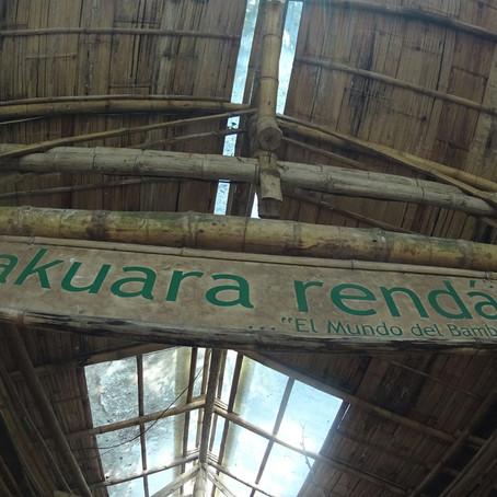 Takuara Rendá, o mundo do bambu